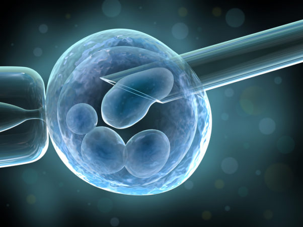 Assisted Human Reproduction