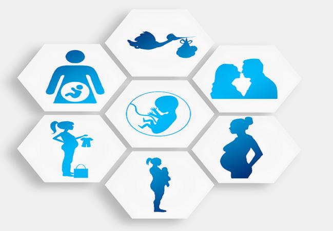 pregnancy, abortion